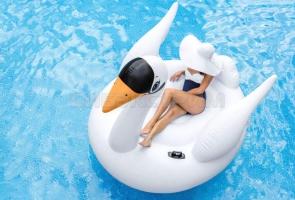 Игрушка для катания по воде Intex Лебедь 194х152х147