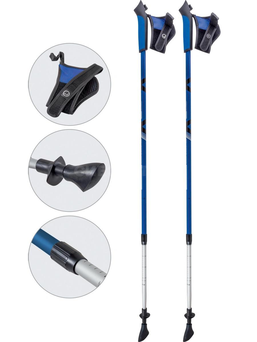 Палки для скандинавской ходьбы AQD-B020 blue