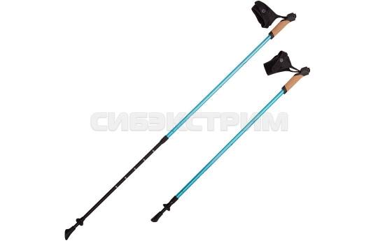 Палки для скандинавской ходьбы NWS-14